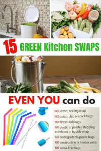 15 Green, Sustainable Kitchen Swaps that even you can make
