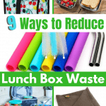 Reducing Lunch Box waste