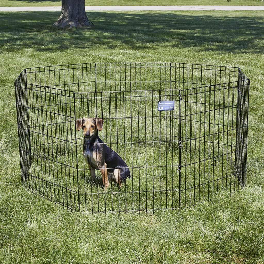 RV'ing with your Dog - Folding Exercise Pen