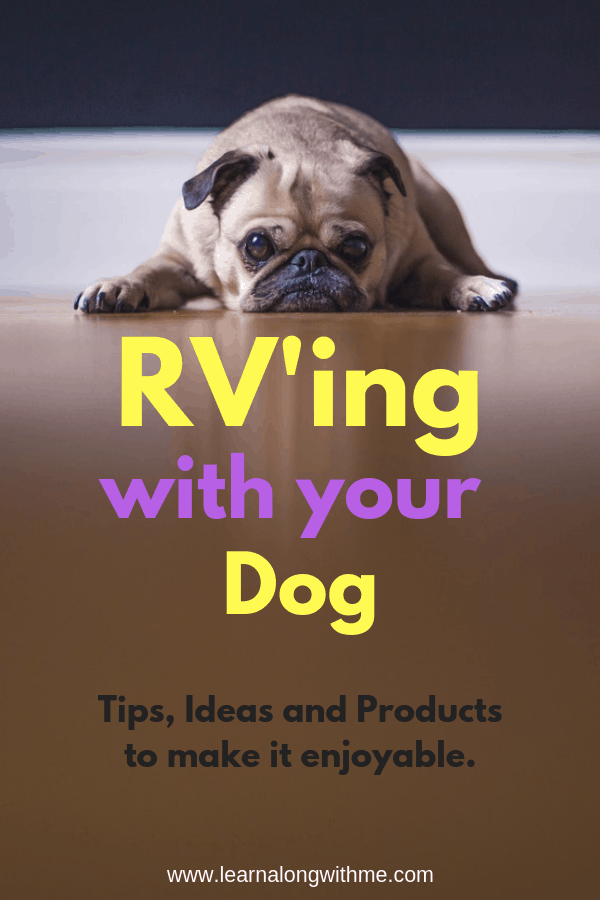RV'ing with your dog