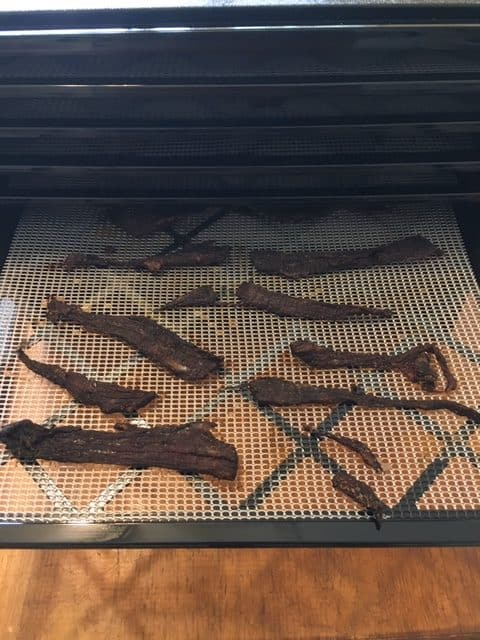 Excalibur Food Dehydrator - different things you can dehydrate. Here we made beef jerky