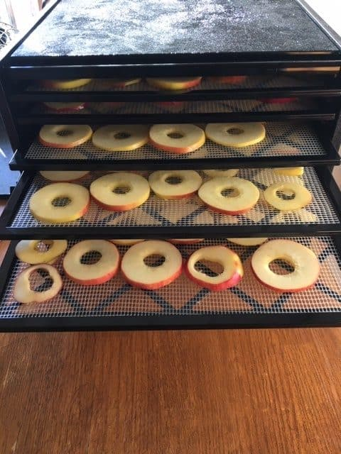 How to dehydrate apples in a food dehydrator - place the full trays into the dehydrator and close the lid
