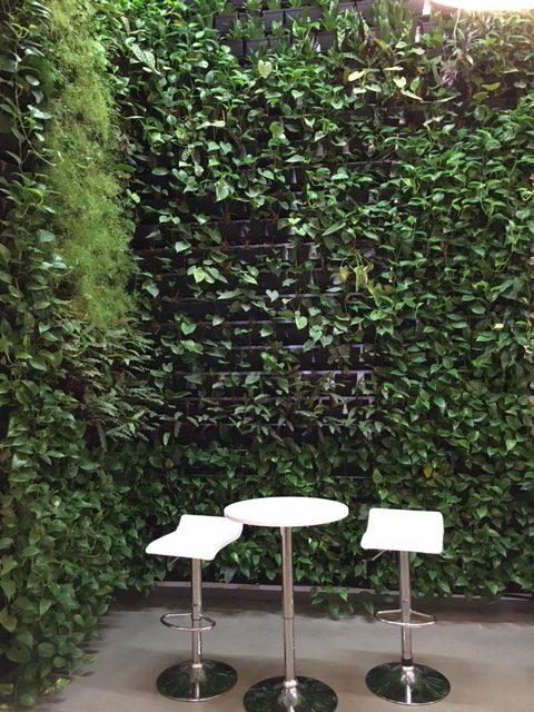Privacy Fence ideas - a vertical garden wall.