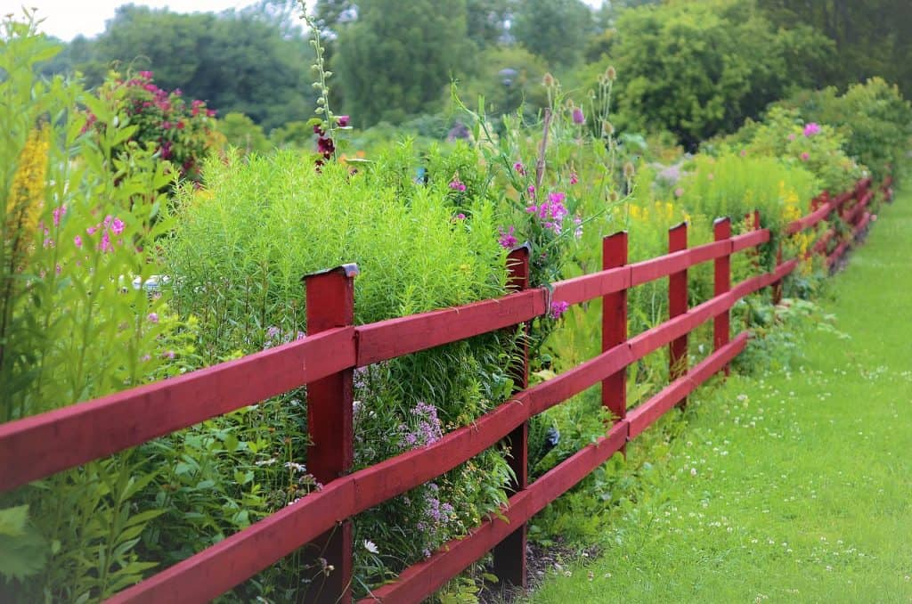 Tall grasses and flowers can provide some privacy especially when planted behind a split rail fence or chain link fence.