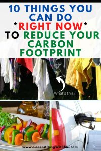 reduce your carbon footprint - 10 ways to do it starting right now