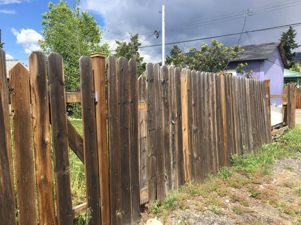 Replacing rotten fence posts - before picture of the dilapidated fence. The rotten fence posts were in a concrete footing.