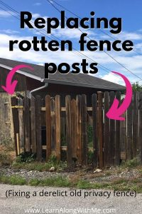 Replacing rotten fence posts
