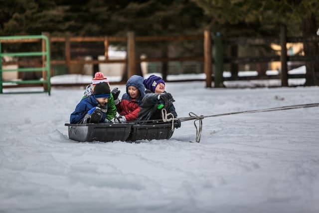 Children's winter birthday party ideas - sledding is a fun activity for kids