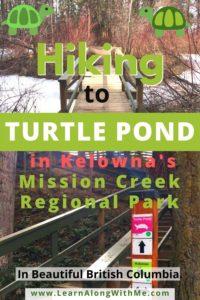 hiking to turtle pond in kelowna