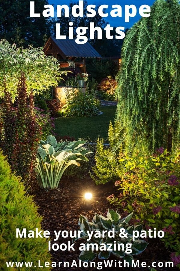 Landscape lighting with solar lights can make your yard look amazon and provide a fantastic view from your patio.