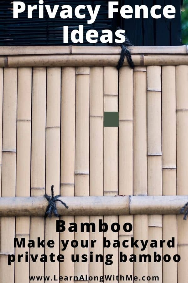 Bamboo used as privacy fencing. You can get rolls of it or panels of it.