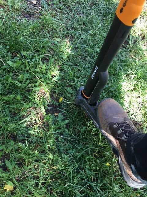 Stepping down on the foot lever of the Fiskars 4  claw weeder