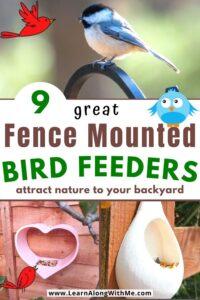fence mounted bird feeders