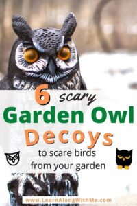 scary owl decoys