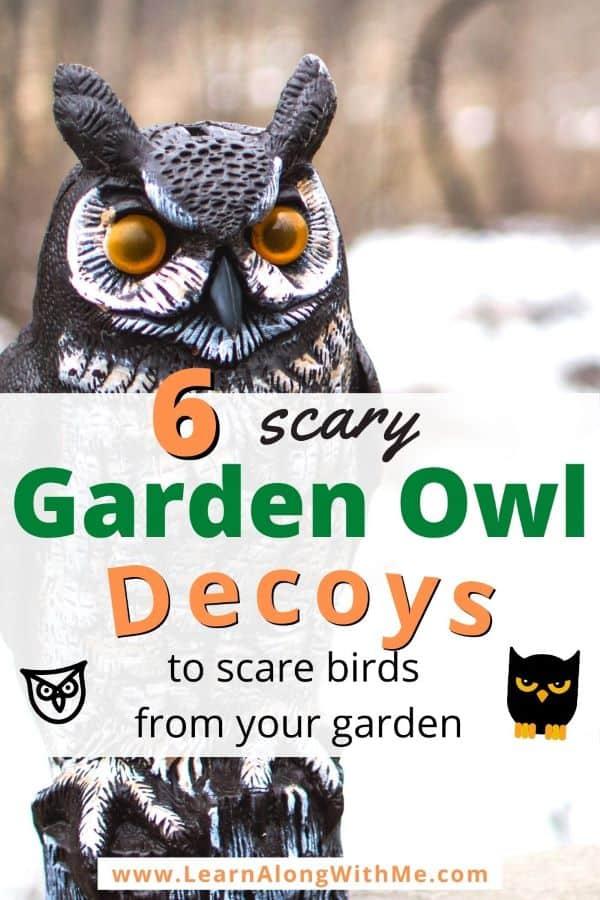 Garden Owl Decoys to scare away other birds.  Also address Do owl decoys work to scare off birds?