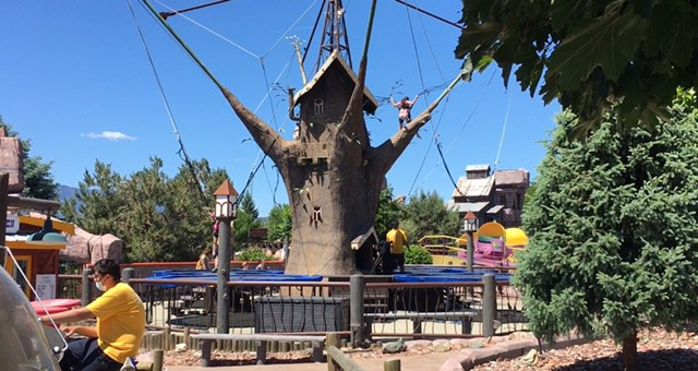 The Bungee Tree at Rattlesnake Canyon in Osoyoos BC
