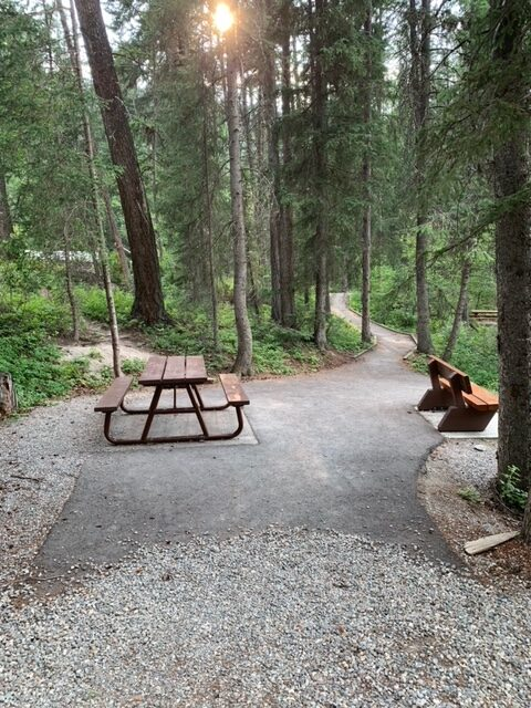 Premier Lake BC day use area picnic tables and bench