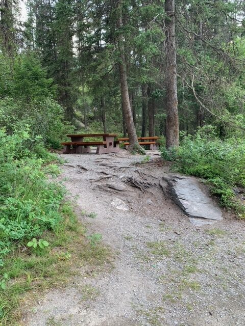 Picnic tables at the day use area of Premier Lake Provincial Park.