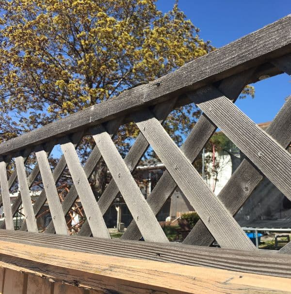 Wood Lattice Fence Topper needs repainting and maintenance