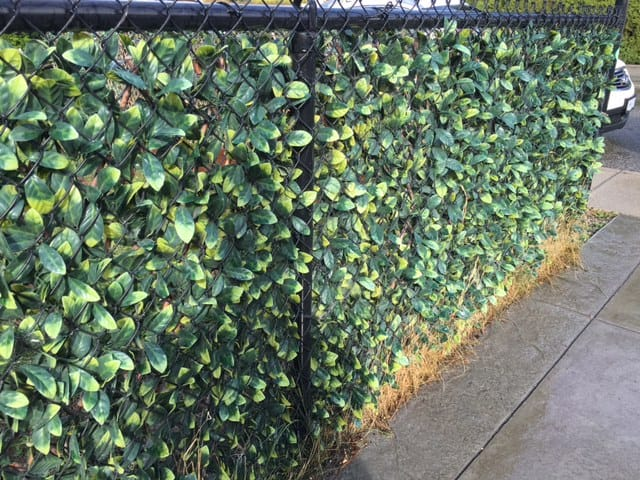 Expandable artificial privacy hedge panel to cover up a chain link fence